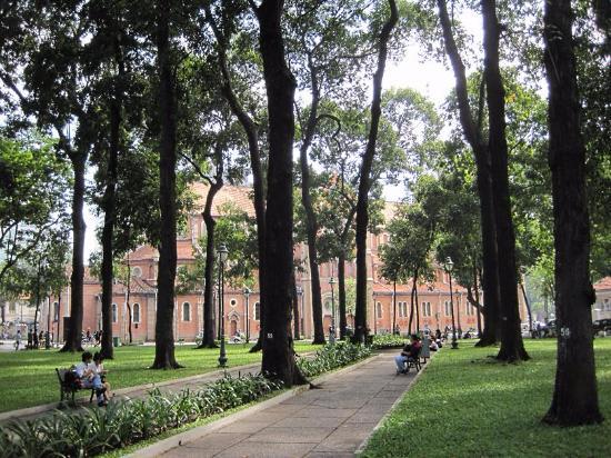 Ảnh đẹp một góc công viên 30-4 Sài Gòn
