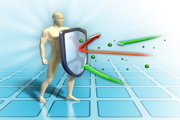 Máy massage lưng giúp tăng cường hệ miễn dịch