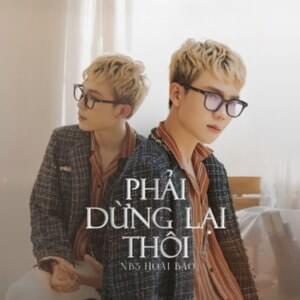 NB3 Hoài Bảo – Phải Dừng Lại Thôi Lyrics   Genius Lyrics